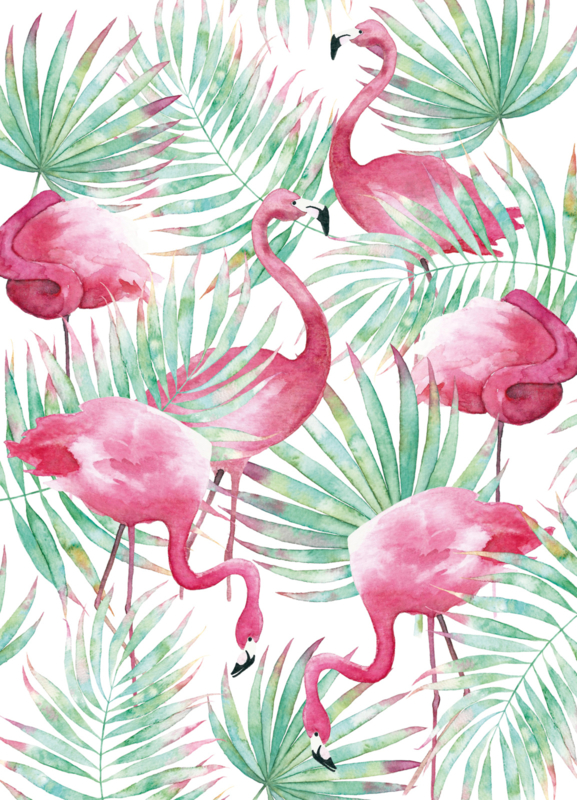 Postkaart | Flamingo Paradise