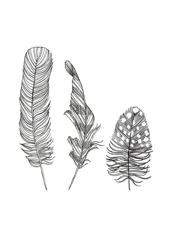 A5 Art Print | Feathers