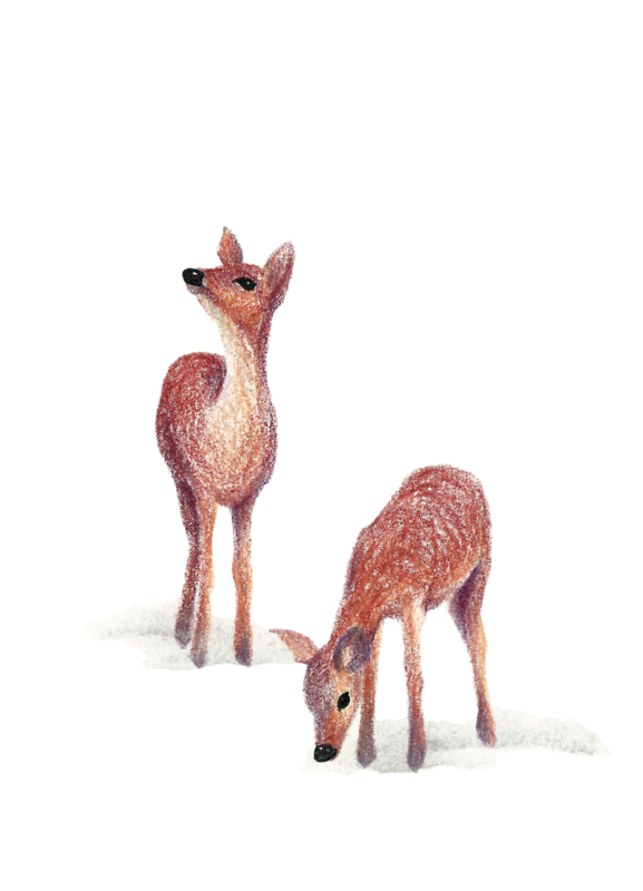 A5 Art Print | My Deer