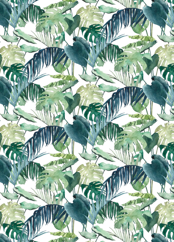 Postkaart | Palm Leaves