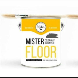 Mr-Floor Gietcoating - dubbel (color) Coating.