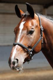 Harry's Horse Halster leder, crystal V, zwart