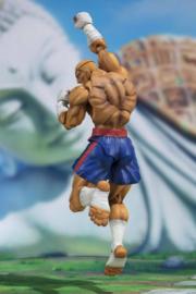 Street Fighter S.H. Figuarts Action Figure Sagat Tamashii Web Exclusive - Pre order