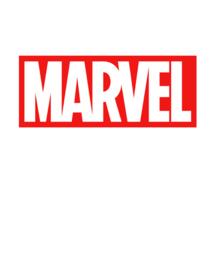 Marvel/ DC Action Figures