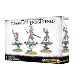 Disciples of Tzeentch Tzaangor Enlightened*