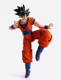 Dragon Ball Z Imagination Works Action Figure 1/9 Son - Pre order