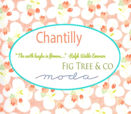 Moda - 'Chantilly' by Fig Tree & Co