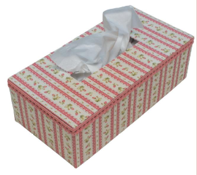 Kartonnage - Tissue Box