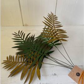 Fern Leaf Bundle Green