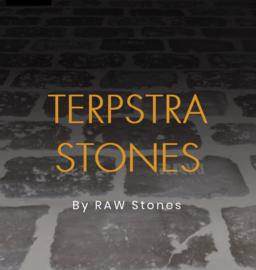 Terpstra Raw Stones prijs is per m2 (alleen de stones)