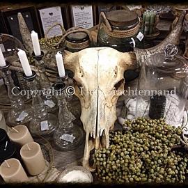 Buffel schedel hangend