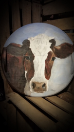 Dutch cow / hollandse koe doorsnede 43 cm