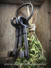 4 gietijzeren sleutels aan ring