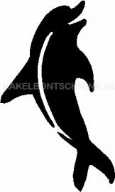 Dolfijn overeind