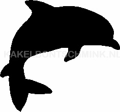 Dolfijn mini