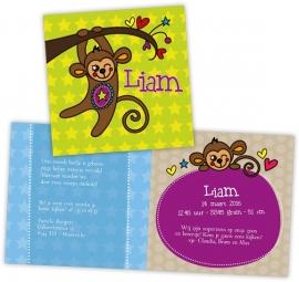 Geboortekaartje met aapje - jongen
