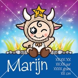 Geboortecanvas sterrenbeeld, Steenbok jongen: 23 dec. - 19 jan.