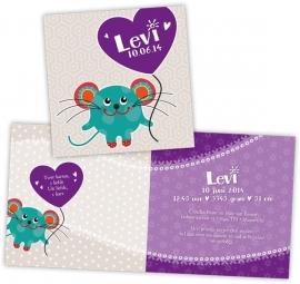 Geboortekaart muis met hart - jongen