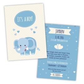 Geboortekaartje olifant - jongen