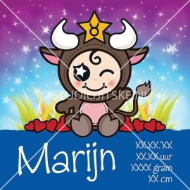 Geboortecanvas sterrenbeeld, Stier jongen: 21 april - 20 mei