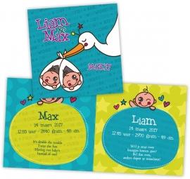 Geboortekaartje ooievaar tweeling - jongens
