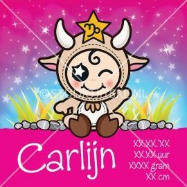 Geboortecanvas sterrenbeeld, Steenbok meisje: 23 dec. - 19 jan.