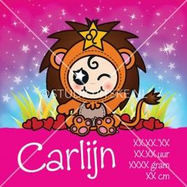 Geboortecanvas sterrenbeeld, Leeuw meisje: 23 juli - 23 aug.