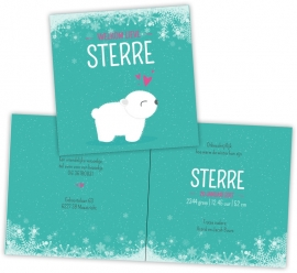 Geboortekaartje winter ijsbeertje - meisje