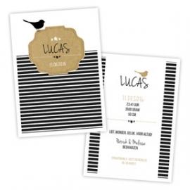 Geboortekaartje zwart/wit met vogeltje en kartonnen label - boy