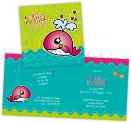 Geboortekaartje walvis - meisje