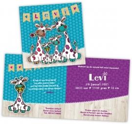 Geboortekaartje met girafjes gezin - jongen