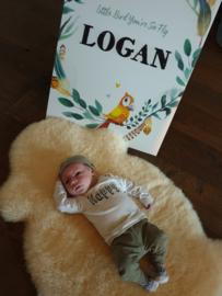 Geboortebord raam voor Logan