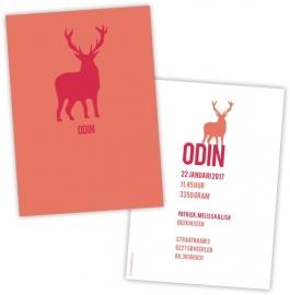 Geboortekaart hert strak design - rood/oranje