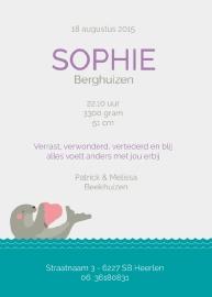 Geboortekaartje met zeehond en hartje - meisje