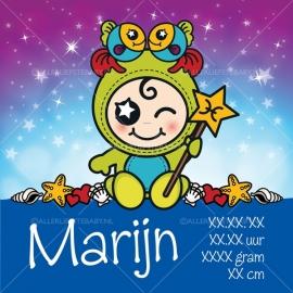 Geboortecanvas sterrenbeeld, Vissen jongen: 20 febr. - 20 maart
