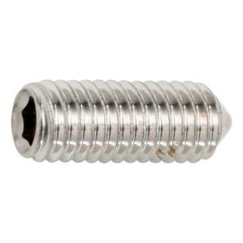 Stelschroef, draadstift binnenzeskant m6 met schuine punt rvs