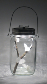 Eén liter zonlicht met vlinders