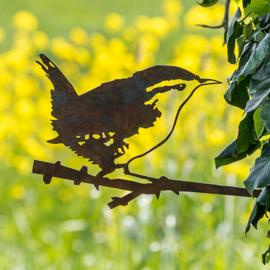 Metalbird Winterkoninkje