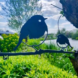 Metalbird Roodborst met jong