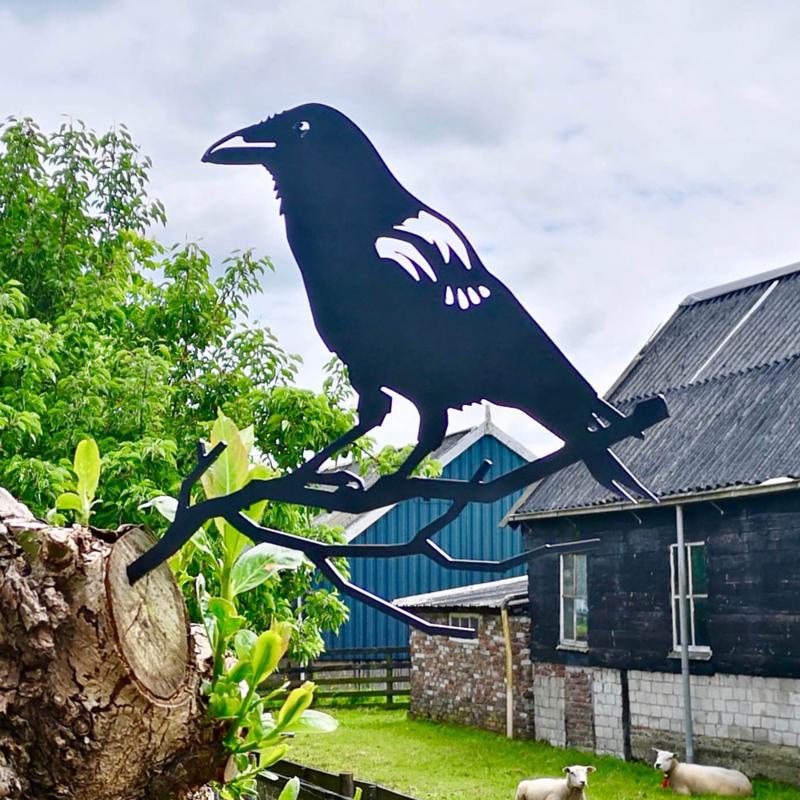 Metalbird Kraai