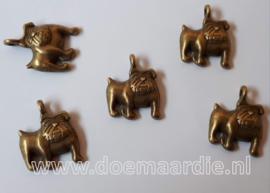 Bulldog, brons