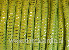 Spoeltje elastiek koord groen met glitters.