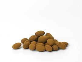 Chocolade Biologische kaneelamandelen 150 gram NL-BIO-01