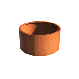 Cortenstaal borderbak (geen bodem) 120x60 cm
