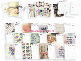 Grape A5 Planner Boxed Set