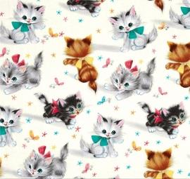 Micheal Miller - Kitties