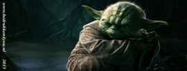 Star Wars The Force Awakens  yoda