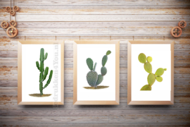 Posters Cactus set a-b-c  in kleur op witte achtergrond A5, A4 of A3