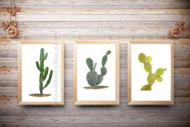 Posters Cactus in kleur op witte achtergrond , set van 3/ A3