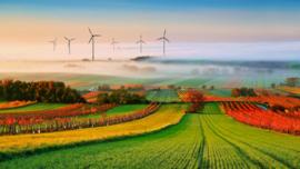 Poster Windmolens in de Natuur